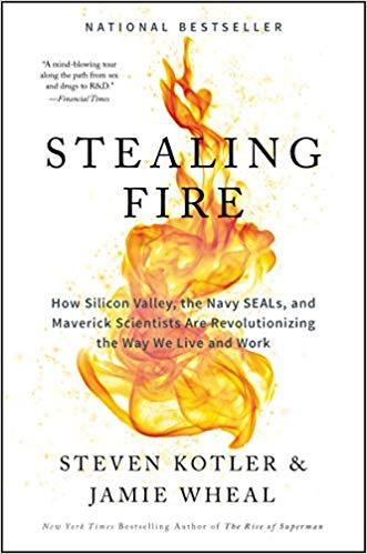 Steven Kotler - Stealing Fire Audio Book Free